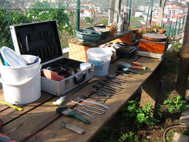 ferramentas para a execução da muda de vaso